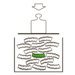 MOSO-Icon-WEB_High-Density-black-2-1024x1024